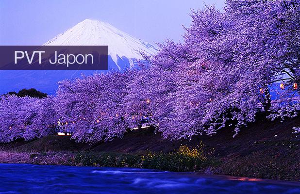 Nom : illustration-pvt-japon (1).jpg Affichages : 869 Taille : 339,6 Ko