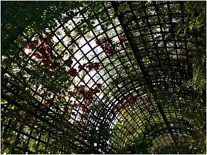 coulee-verte-paris-pvtistes.net-4.jpg