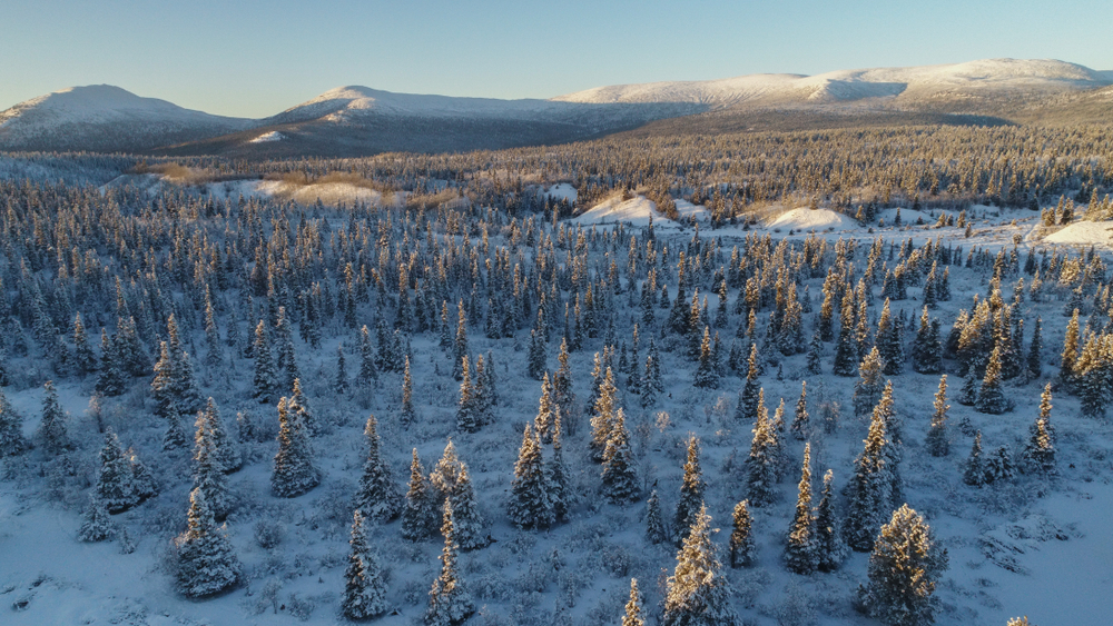 pvt-canada-yukon-hiver
