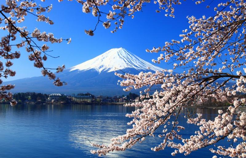 http://pvtistes.net/wp-content/uploads/2013/05/MontFuji3-800x515.jpg