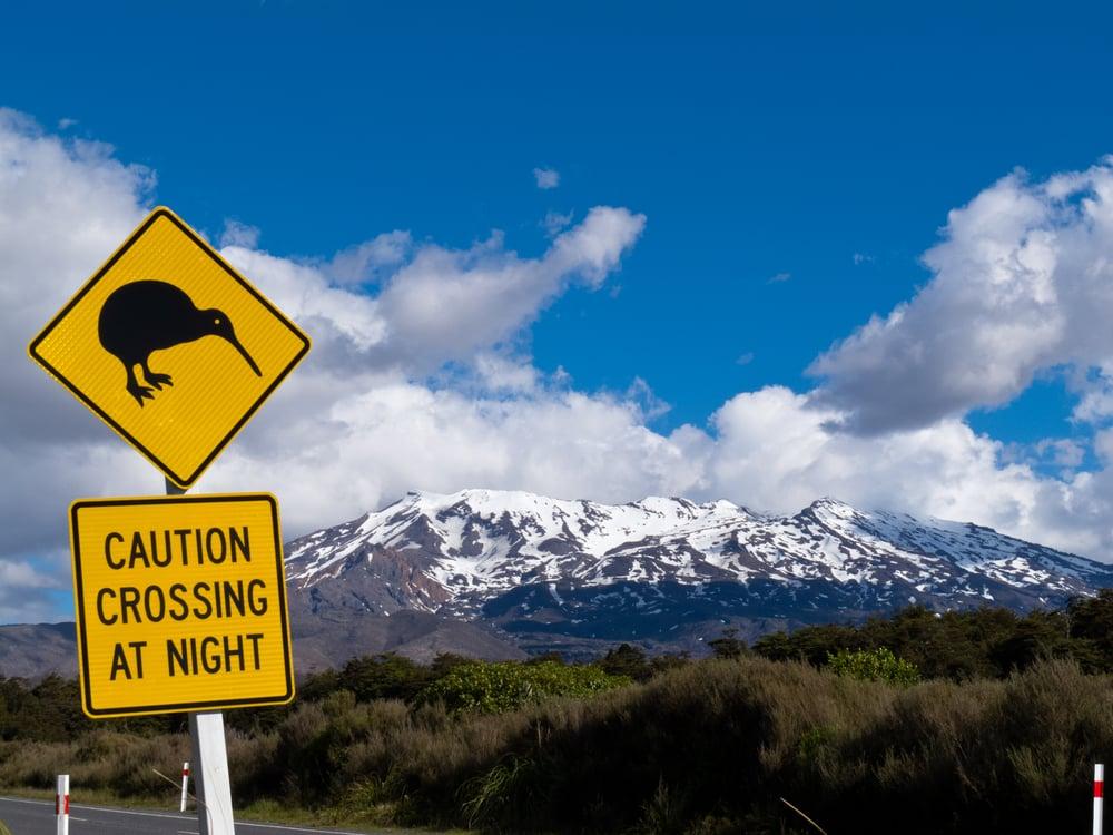 Nouvelle Zélande Photo: Les Animaux De Nouvelle-Zélande