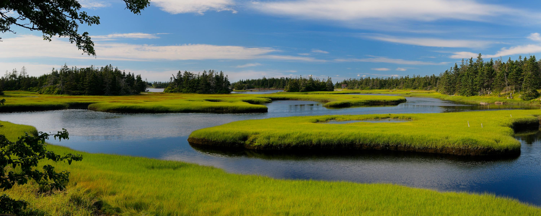 parc national Ile de Sable Nouvelle Ecosse Canada