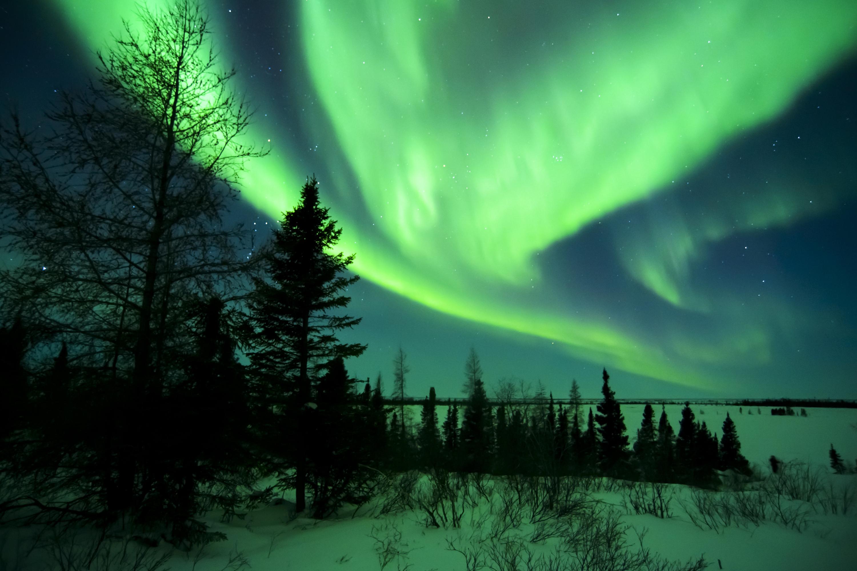 Parc national Wapusk Canada