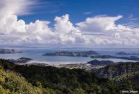 Un road trip dans le Coromandel en Nouvelle-Zélande