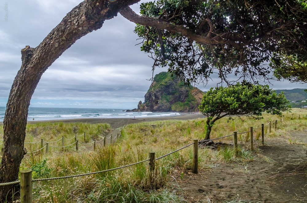 Auckland-Piha