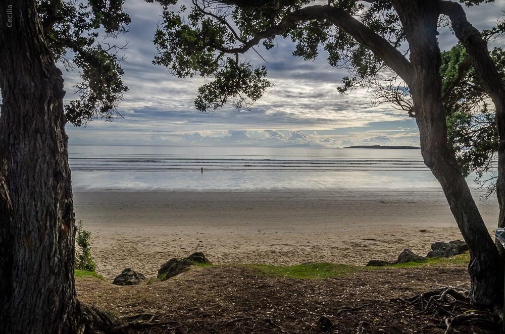 Auckland-PlageVan