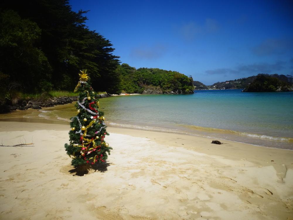 Stewart Island - PVTistes voyage stop et HelpX en Nouvelle-Zélande