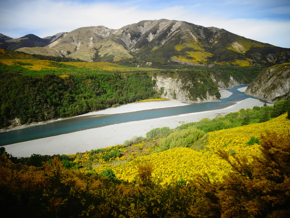 Tranzalpine - PVTistes voyage stop et HelpX en Nouvelle-Zélande