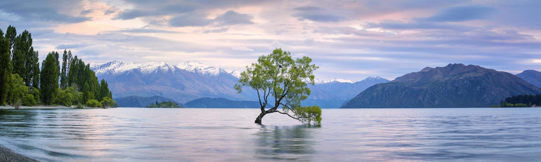 NZ rencontres sites 100 gratuit suis-je datant d'un test narcissique
