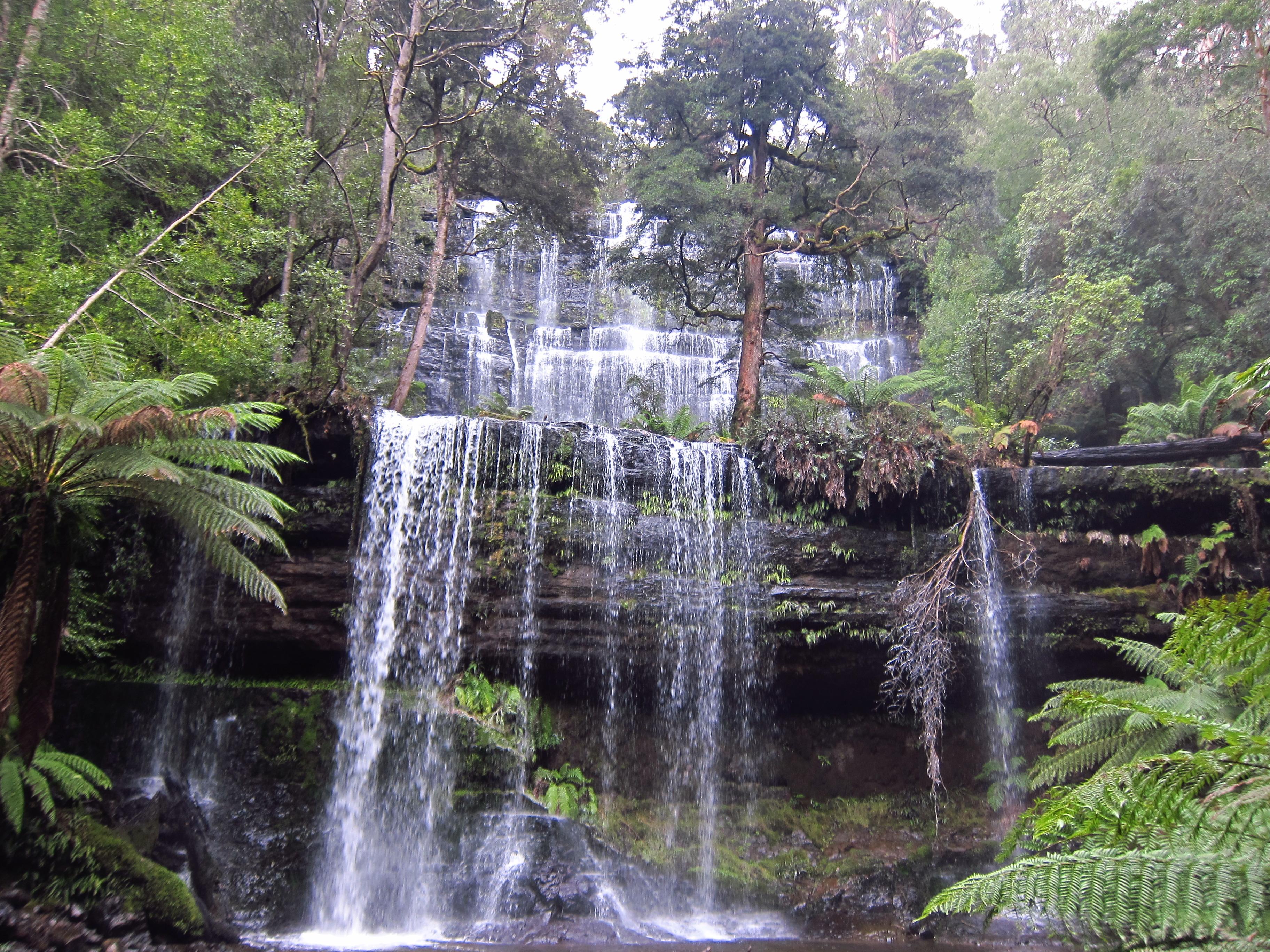 Cedric - Patissier en Australie - Mount Field National Park_