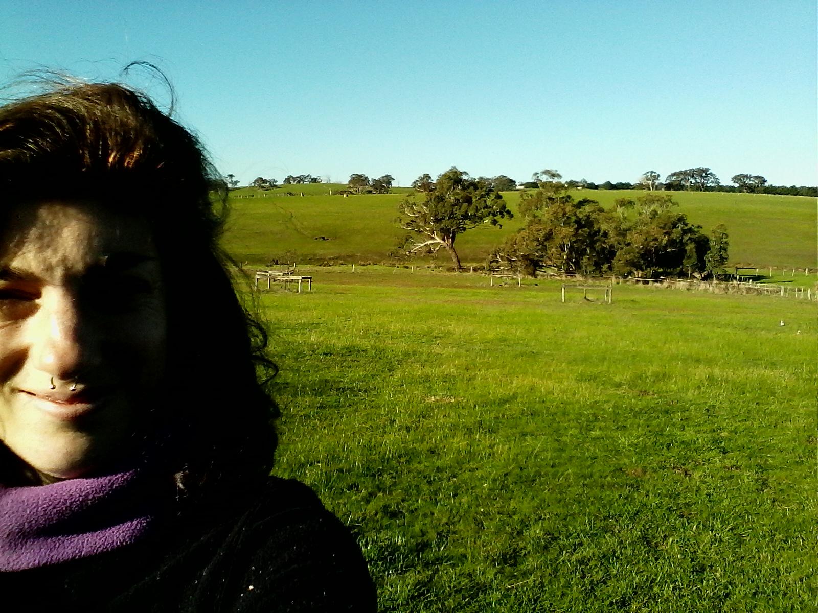 Farm Hand_Chevaux de course-Australie