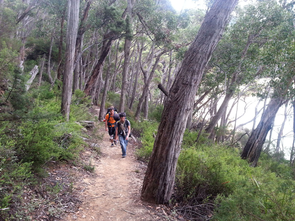 Wilsons Promontory Park-Hiking