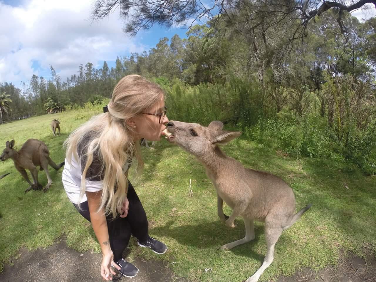 Coiffeuse en Australie - Kangourou