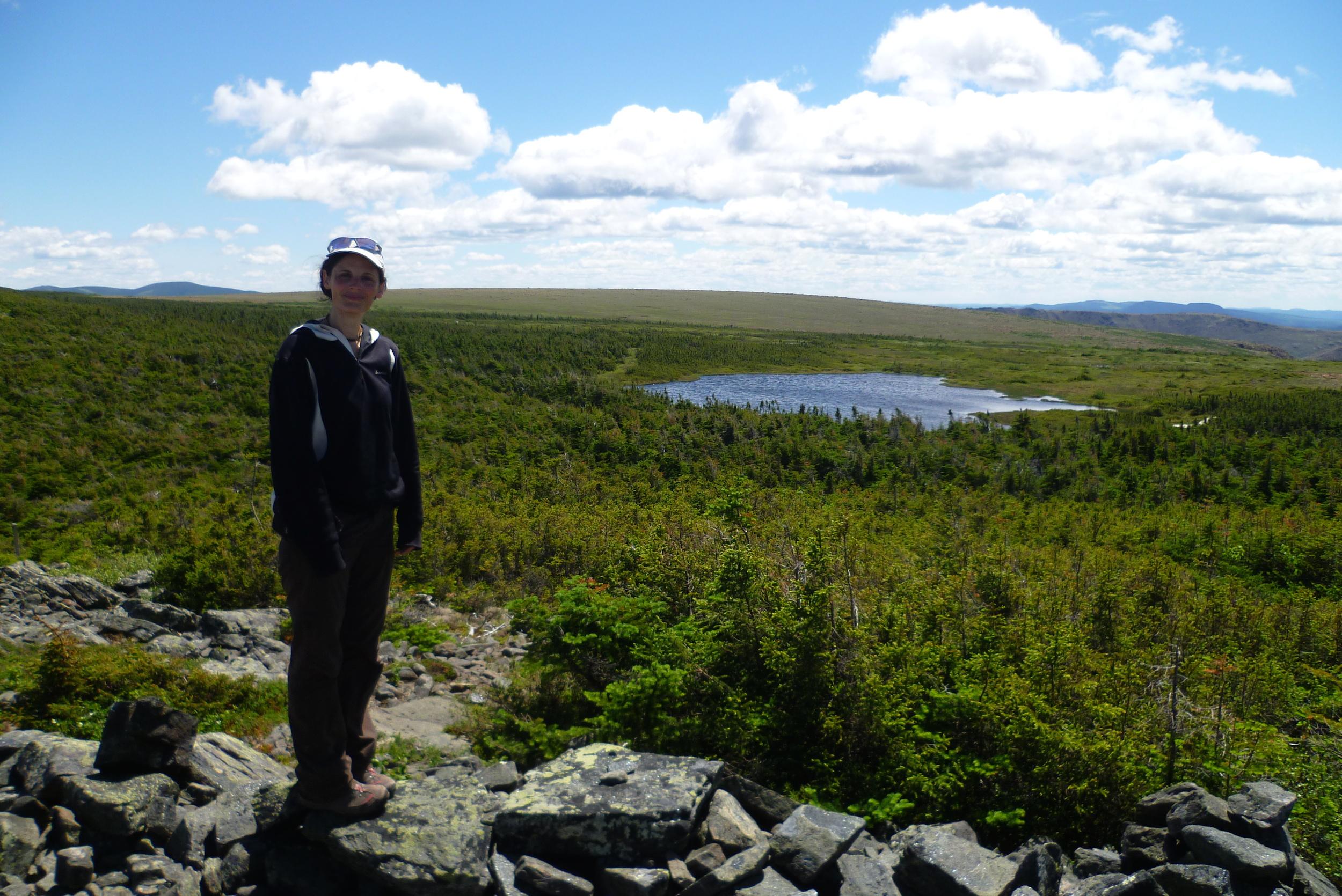 Sommet du Mont Albert - Parc de la Gaspesie - Canada