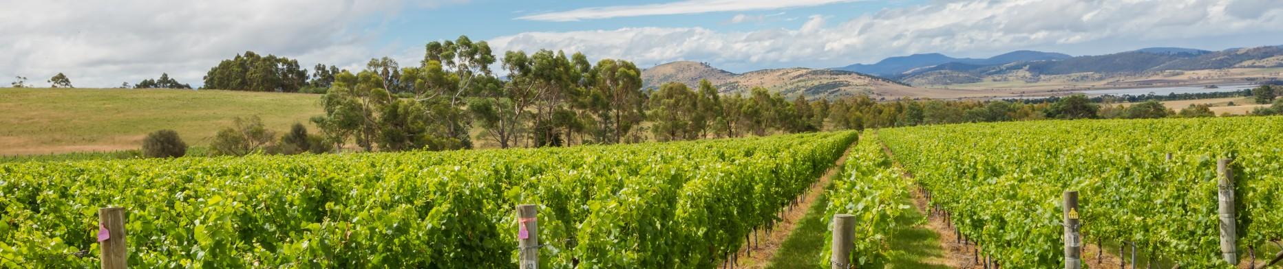 agriculteurs site de rencontre en Australie activité datant de Londres