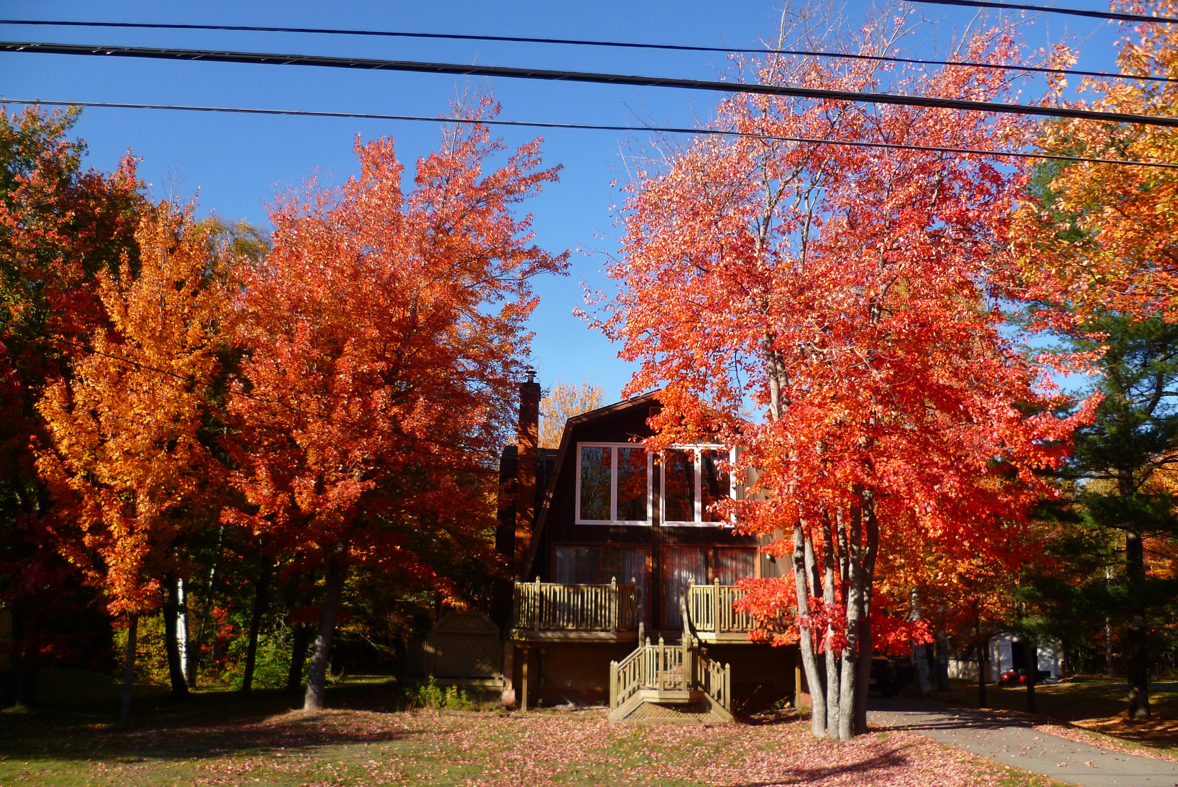 20-maison-en-automne-nb-acadie