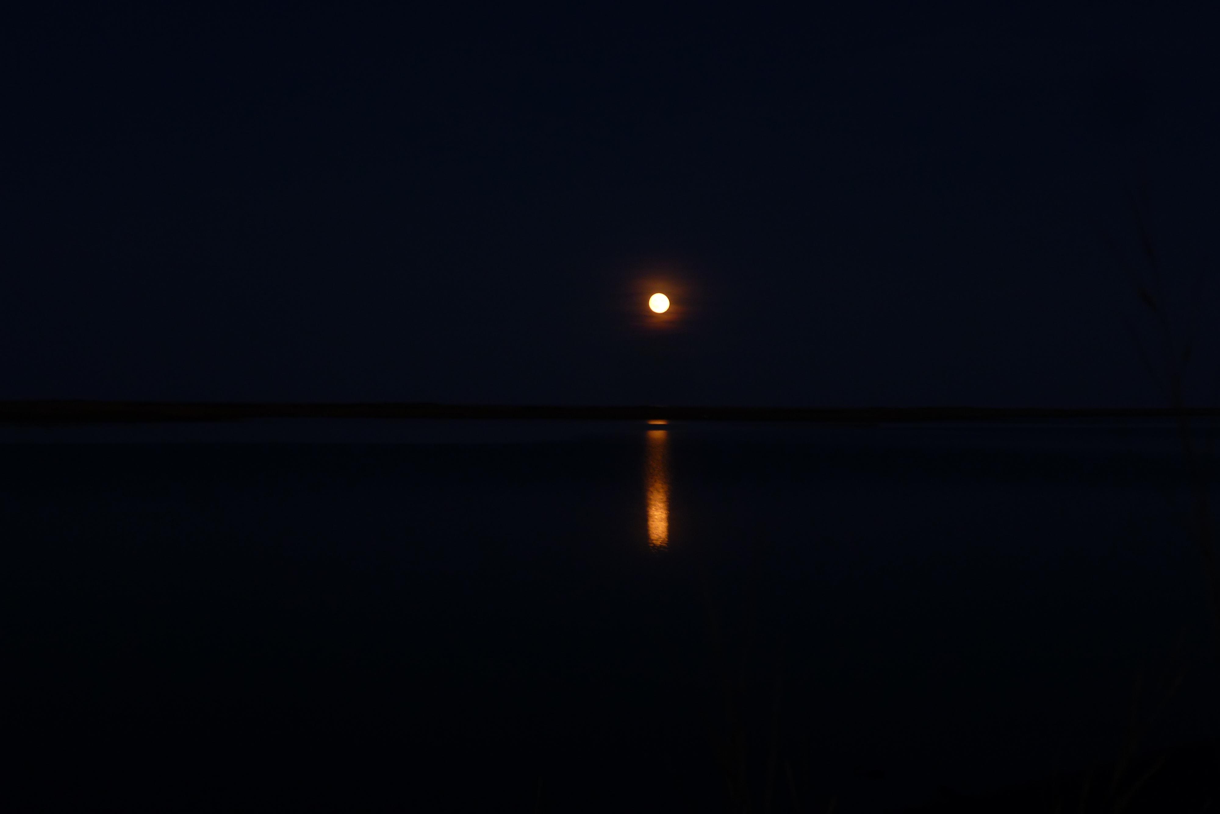 41-bonne-nuit-anne