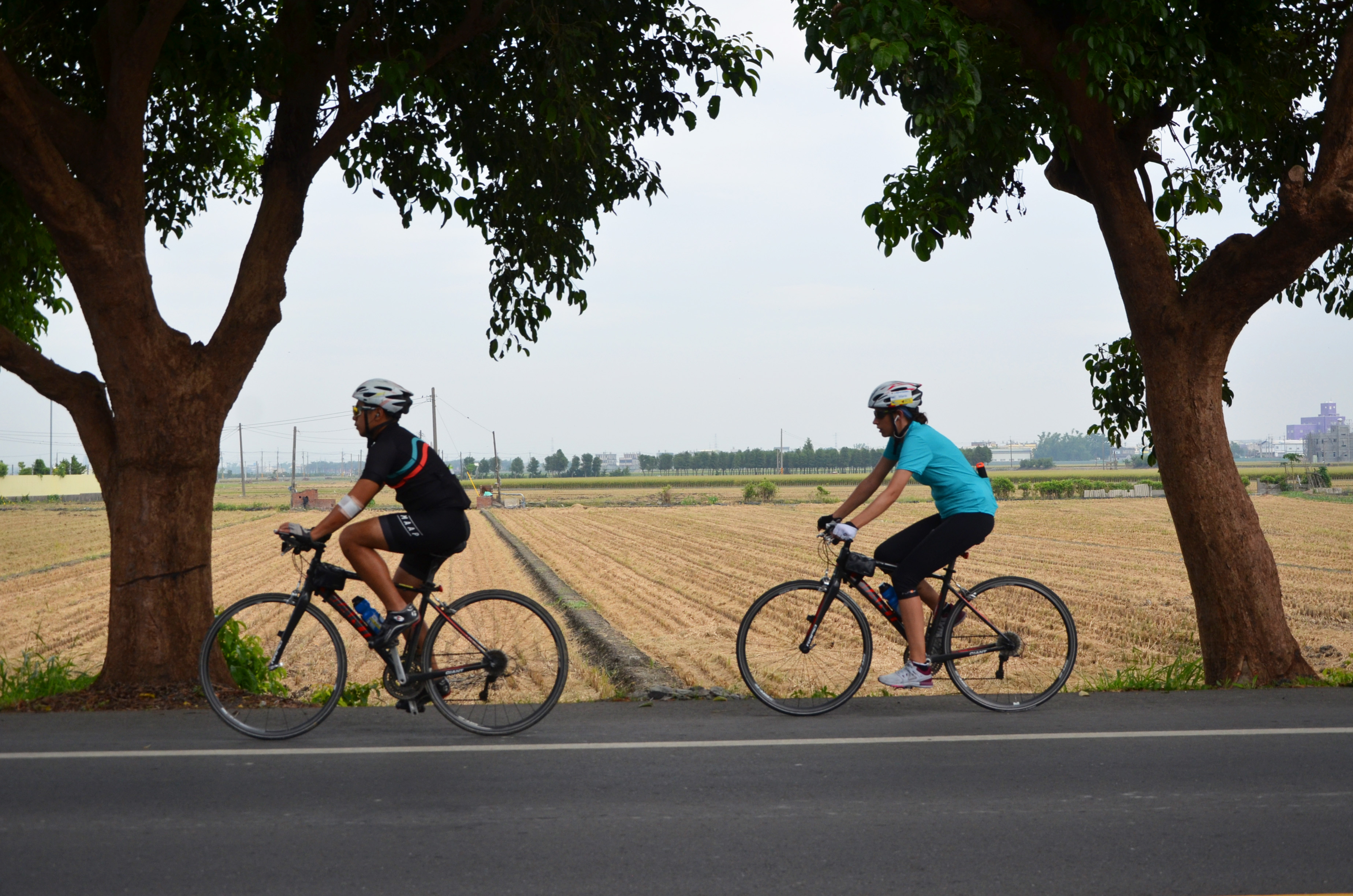campagne-taiwan-velo-copie