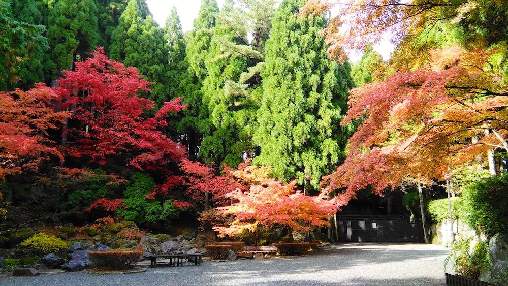 Bilan de mon PVT Japon - Nature