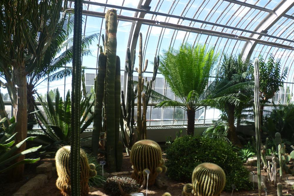 Jardin botanique - Montreal