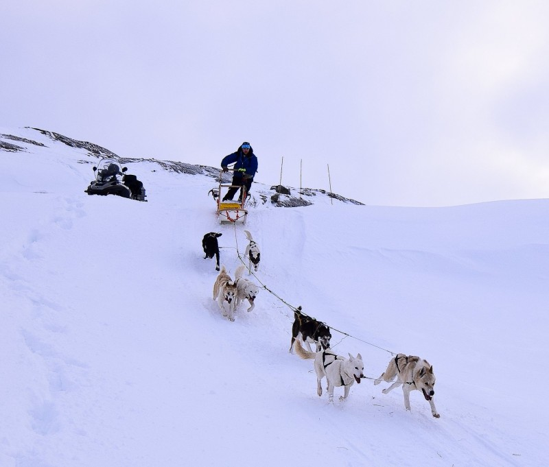 pvt-canada-argentine-musher-maxime
