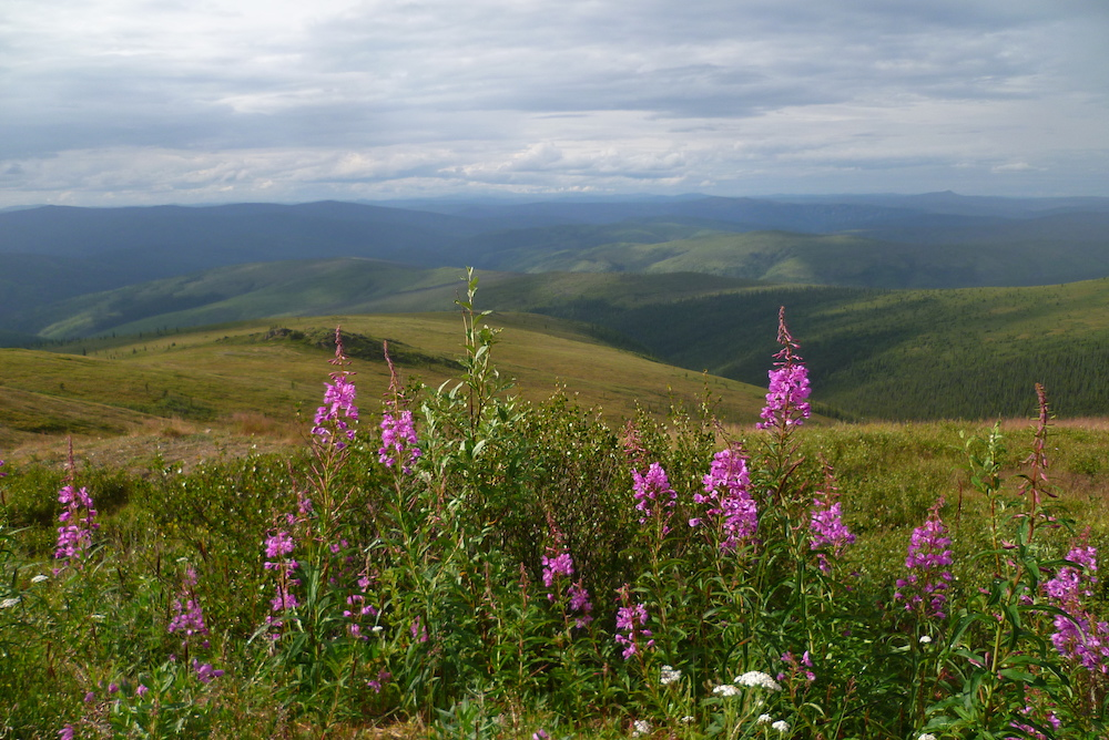 Premier paysage Alaska
