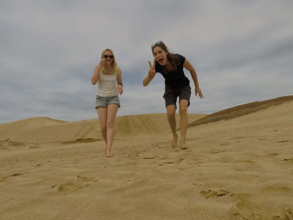 Dunes - Volontariat en Nouvelle-Zelande