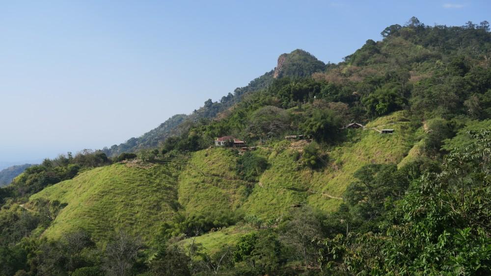 pvt-colombie-minca-paysage