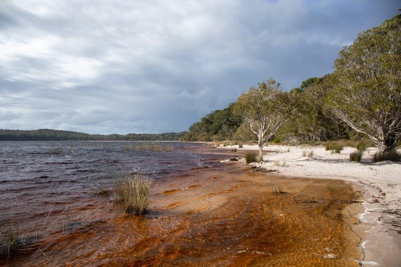 Fraser-Island-Lake-Benarroon
