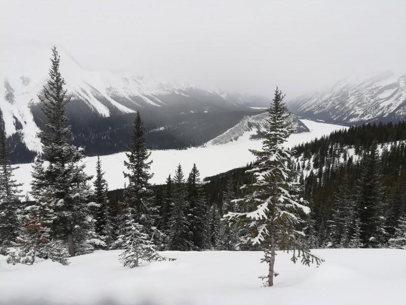 environs de Calgary