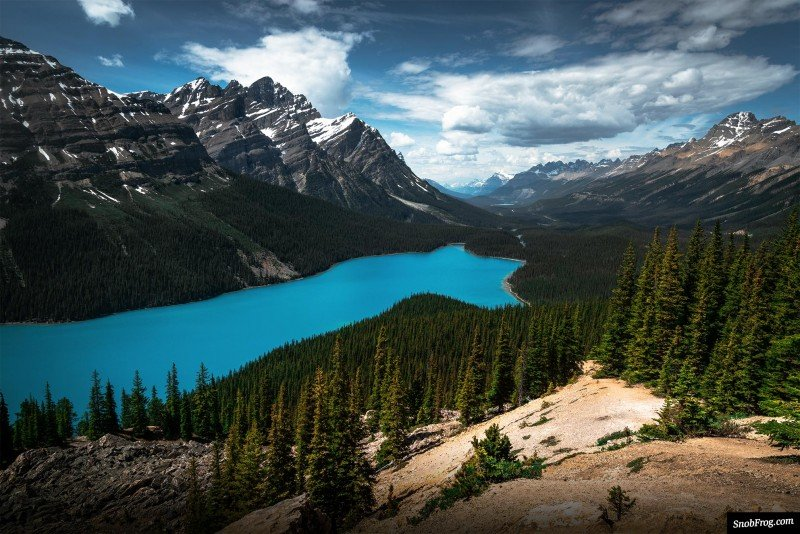 rocheuses canadiennes pvtistes peyto lake