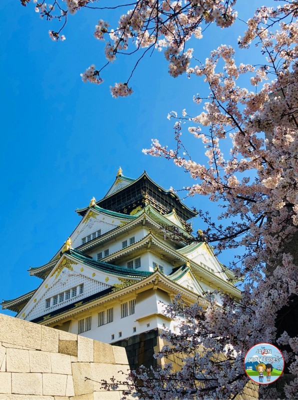 Naomi Charlotte PVT Japon pvtistes blog awards