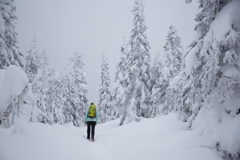 raquettes-ski-pvt-canada