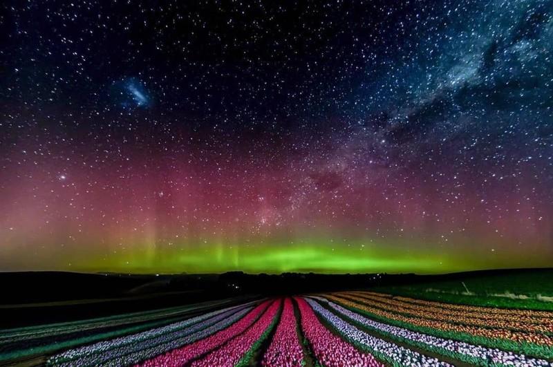 Aurores Australes Tasmanie Australie