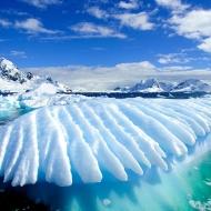 Avatar de Antartica