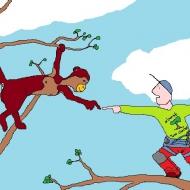 Avatar de mowgli01